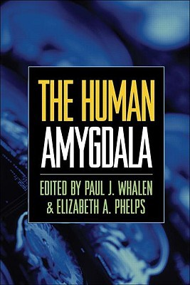 The Human Amygdala