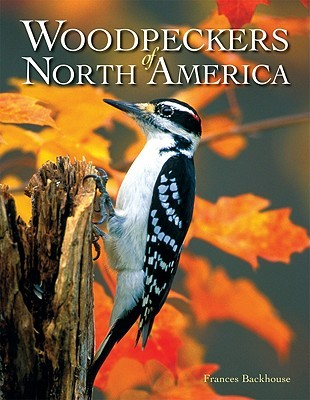 Woodpeckers of North America