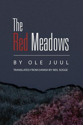 The Red Meadows by Neil Sogge