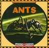 Ants by Susan Ashley