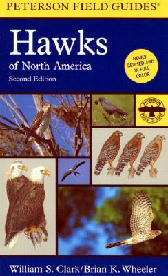 a-field-guide-to-hawks-of-north-america