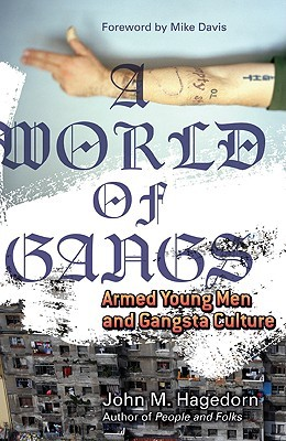 A World of Gangs by John M. Hagedorn