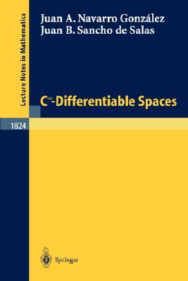 C Degrees\Infinity - Differentiable Spaces