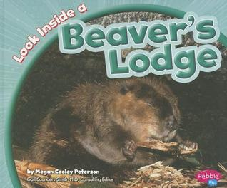 Look Inside a Beaver's Lodge