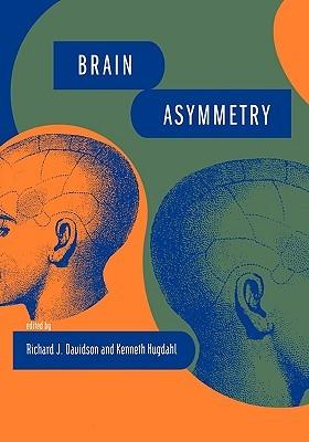 Brain Asymmetry