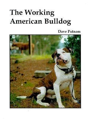 The Working American Bulldog