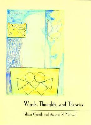 words-thoughts-and-theories