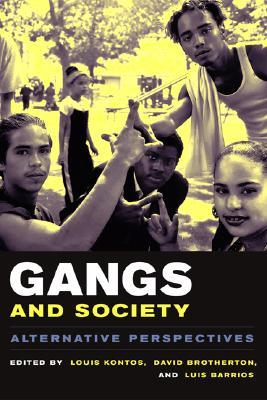 gangs-and-society-alternative-perspectives