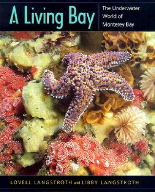 A Living Bay: The Underwater World of Monterey Bay