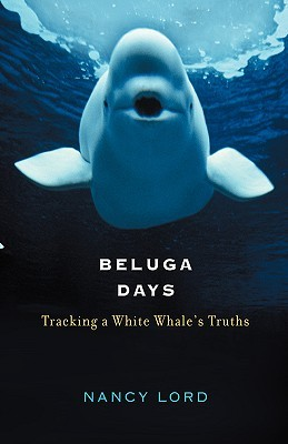 beluga-days-tracking-a-white-whale-s-truths