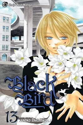 Black Bird, Vol. 13 (Black Bird, #13)