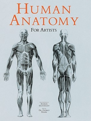 Human Anatomy for Artists by András Szunyoghy