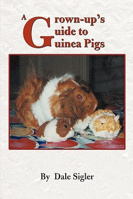 A Grown-Up's Guide to Guinea Pigs
