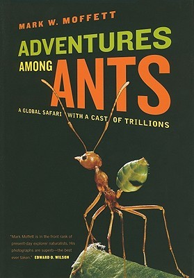 Adventures among Ants by Mark W. Moffett