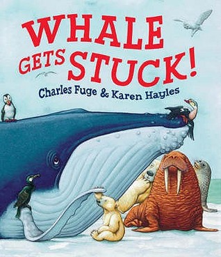 Whale Gets Stuck!