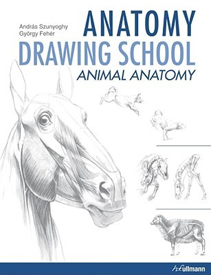 anatomy drawing school animal anatomy by andrs szunyoghy - Animal Anatomy Coloring Book
