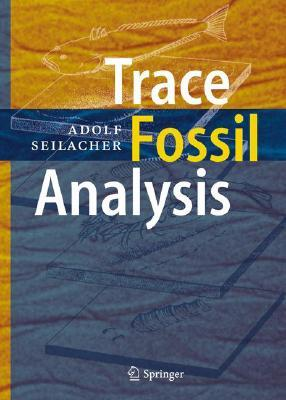 Trace Fossil Analysis