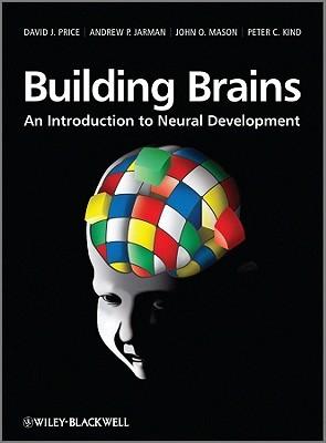 Building Brains: An Introduction to Neural Development
