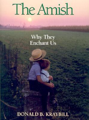 Amish Why They Enchant Us: Why They Enchant Us