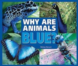 Why Are Animals Blue? by Melissa Stewart