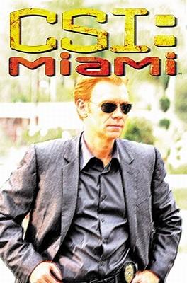 CSI: Miami Collection I (CSI: Miami Graphic Novels 1-3)
