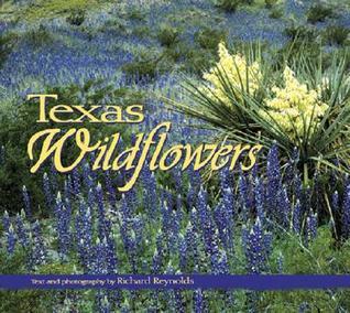texas-wildflowers