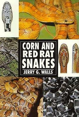 The Guide to Owning a Corn Snake by Jerry G. Walls
