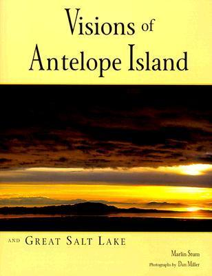 Visions Of Antelope Island And Great Salt Lake
