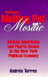 Between Melting Pot and Mosaic: African American and Puerto Ricans in the New York Political Economy