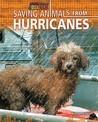 Saving Animals from Hurricanes