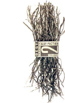 Best American Gay Fiction #2 by Brian Bouldrey