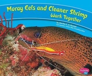 Moray Eels and Cleaner Shrimp Work Together