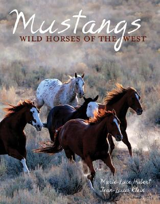 mustangs-wild-horses-of-the-west
