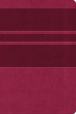 Ultra Slim Bible, Kjv