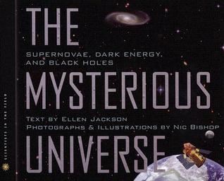The Mysterious Universe: Supernovae, Dark Energy, and Black Holes