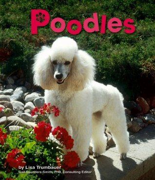 Poodles