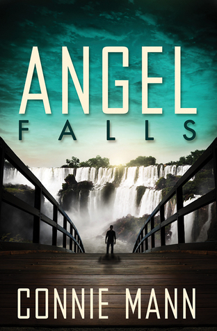 Image result for angel falls connie mann