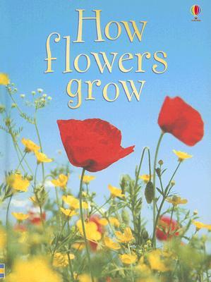 How Flowers Grow