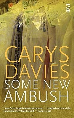 Some New Ambush (Salt Modern Fiction)