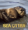 Eye on the Wild: Sea Otter