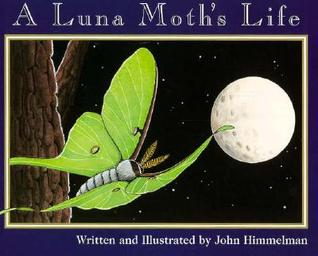 A Luna Moth's Life by John Himmelman