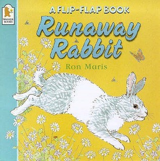Runaway Rabbit (Flip The Flap Books)