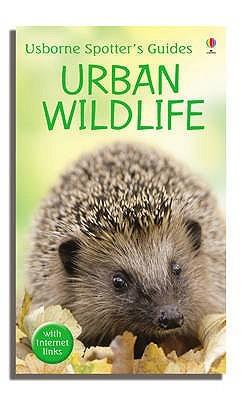 urban-wildlife