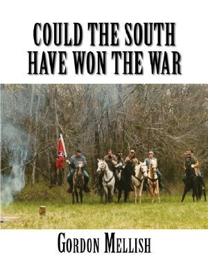 Could the South Have Won the War