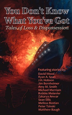 You Don't Know What You've Got... Tales of Loss and Dispossession Epub Download
