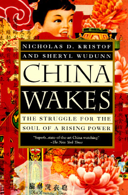 China Wakes: The Struggle for the Soul of a Rising Power (ePUB)