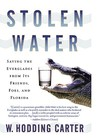 Stolen Water: Saving the Everglades from Its Friends, Foes, and Florida