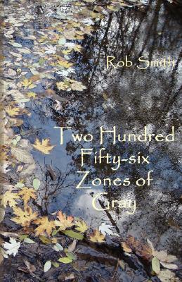 256 Zones of Gray: Poems