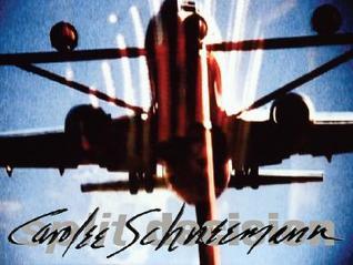 carolee-schneemann-split-decision