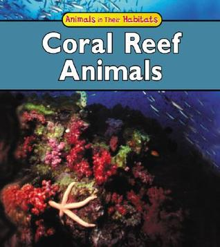 Coral Reef Animals